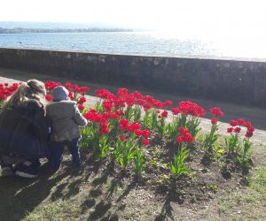 Such a Colourful Walk in Morges!